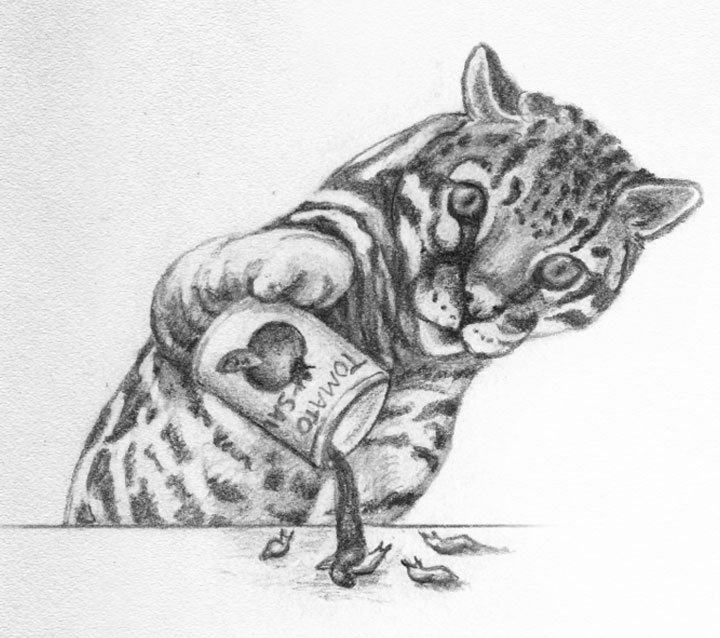 """If I Were an Ocelot"" by Renee M. LaTulippe. Illustration by Donna Goeddaeus."
