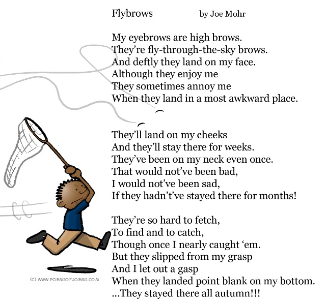 """Flybrows"" poem and illustration"