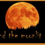 Halloweensie Contest: 'round the moonlit town