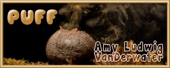 """Puff"" by Amy Ludwig VanDerwater"