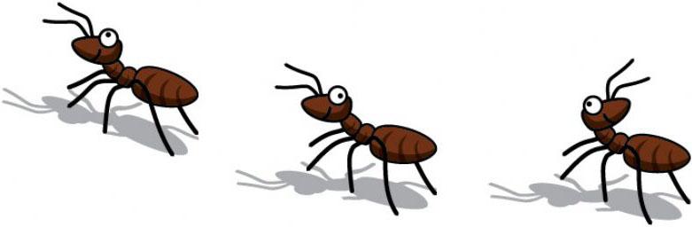 ants - joyce sidman