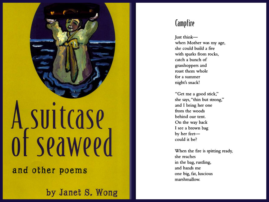 A SUITCASE OF SEAWEED by Janet Wong
