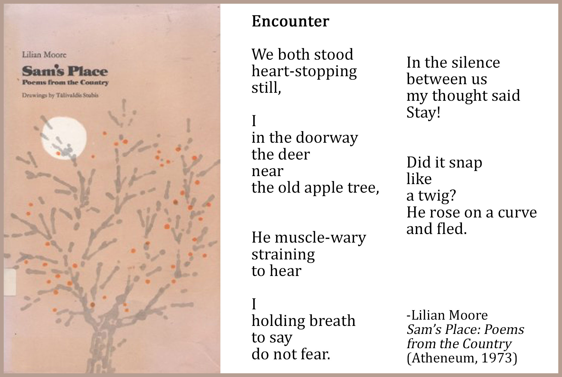 Worksheets Water Poems That Rhyme spotlight on ncte poets lilian moore with lee bennett hopkins encounter spread