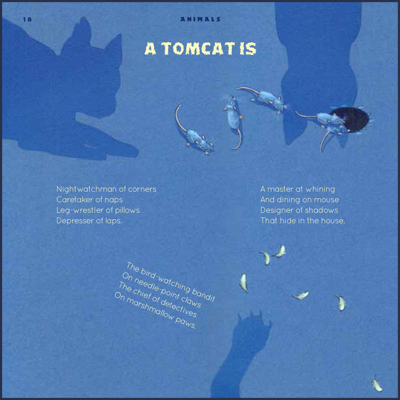 tomcat-1