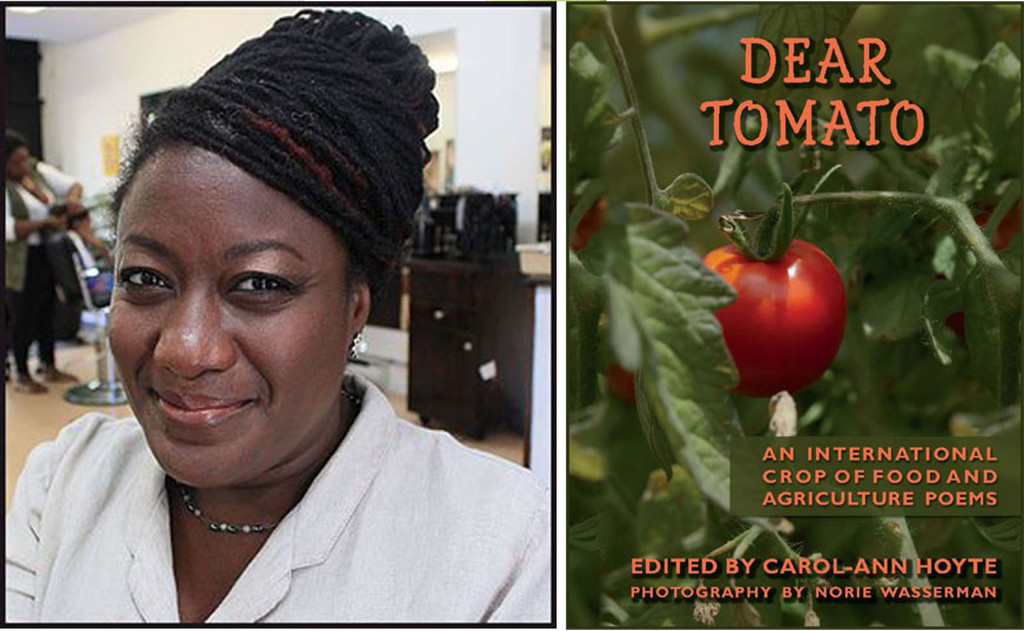 Carol-Ann Hoyte and DEAR TOMATO