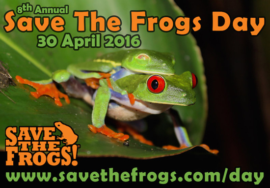 icon-Save-The-Frogs-Day-2016-2-550