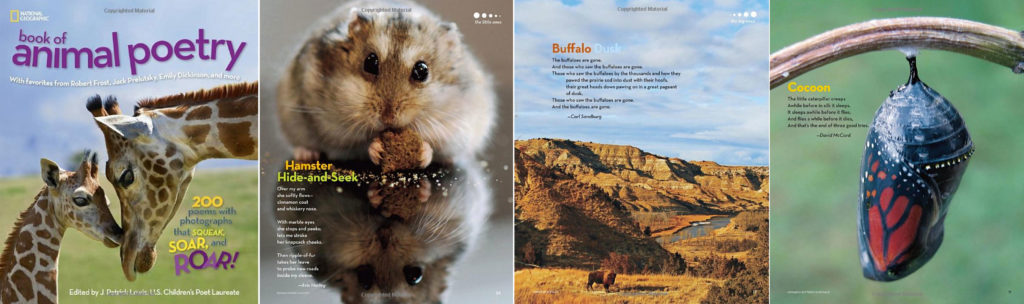 NatGeo-animals-spread